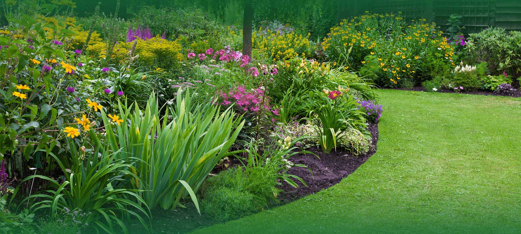 Professional garden and lawn landscaping services in Karachi